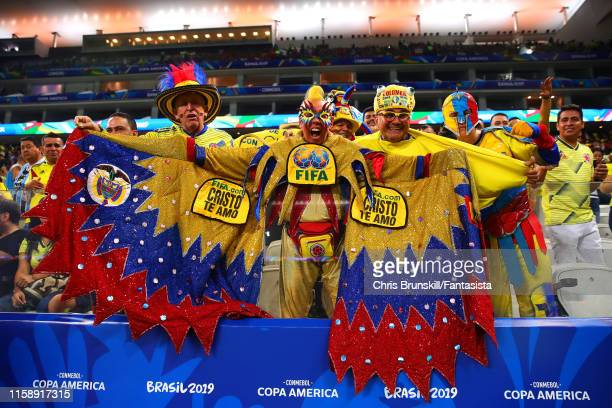Colombia fans look on during the Copa America Brazil 2019 quarterfinal match between Colombia and Chile at Arena Corinthians on June 28, 2019 in Sao...