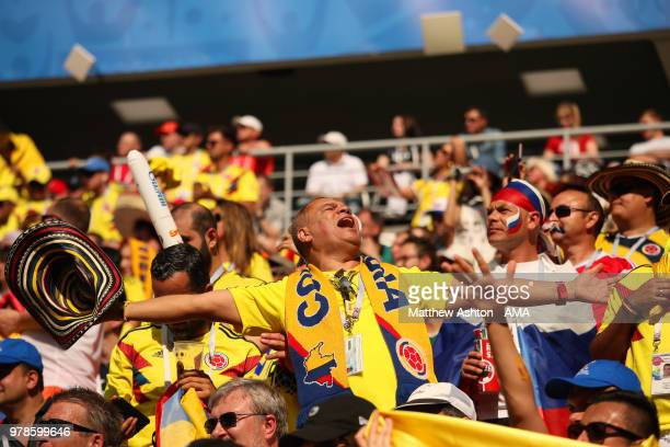 Colombia fans show their support during the 2018 FIFA World Cup Russia group H match between Colombia and Japan at Mordovia Arena on June 19, 2018 in...