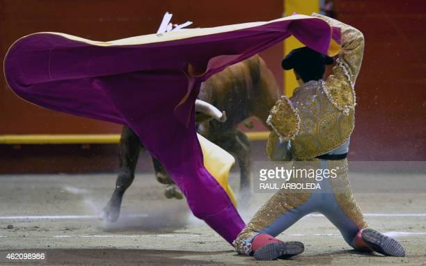 Colombian bullfighter Juan De Castilla performs during a bullfight at La Macarena bullring on January 24 2015 in Medellin Antioquia deparment...