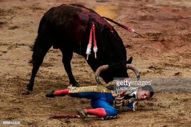 Colombian bullfighter Sebastian Ritter is hit by the bull during a bullfight at the Canaveralejo bullring in Cali department of Valle del Cauca...