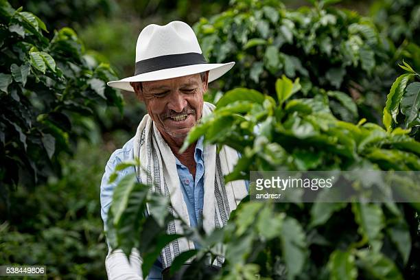 Colombian coffee farmer