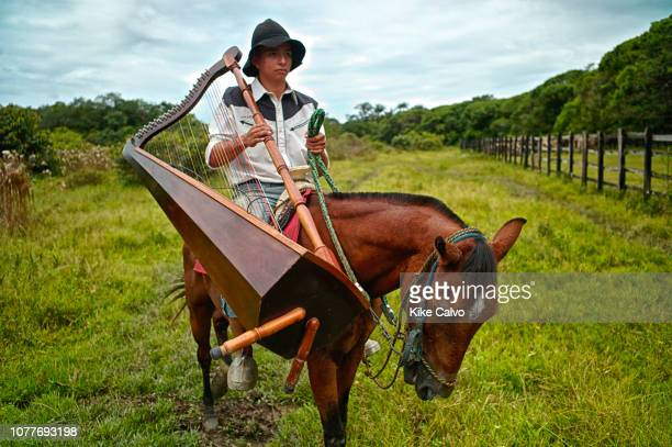 Colombian cowboy carrying a traditional harp on a horse locally known as arpa llanera
