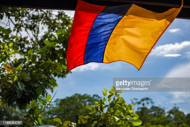 colombian flag (red, blue and yellow) hanging over blue sky over the rain forest trees - bandera colombiana fotografías e imágenes de stock