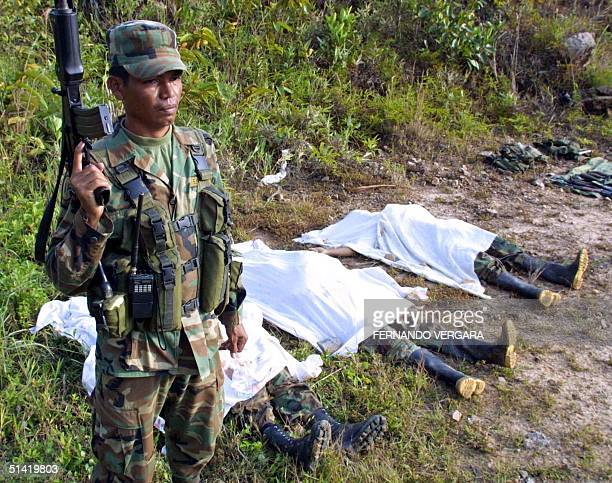 Colombian government soldier stands before the bodies of three guerrillas of the National Liberation Army killed in combat 15 March 2002 180 km east...