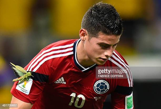 Colombia's midfielder James Rodriguez celebrates with a locust on his arm after scoring during the quarterfinal football match between Brazil and...