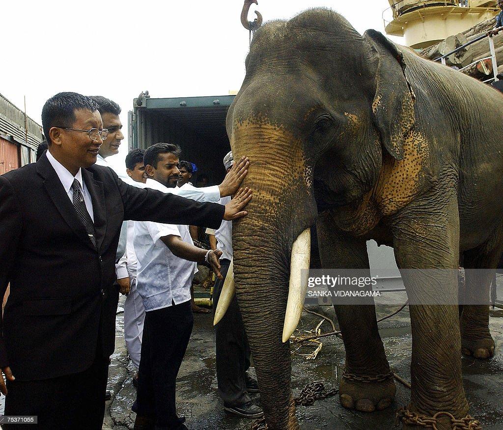 Myanmar ambassador to Sri Lanka, Tin Oo... : Nachrichtenfoto