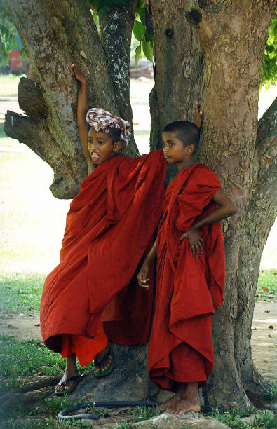 Two Sri Lankan Buddhist Novice Monk Acti Pictures Getty Images