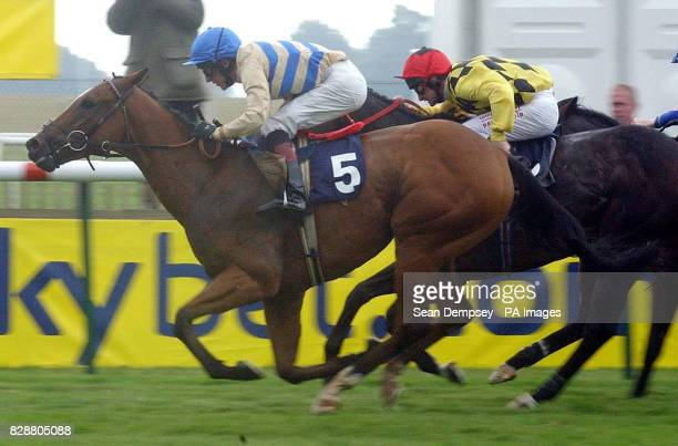 Colonel Cotton ridden by Will Ryan wins the Rous Stakes at Newmarket racecourse ahead of Bali Royal ridden by Dane O'Neill Colonel Cotton was a 251...