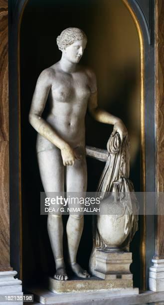 Colonna Venus Roman copy in marble of Aphrodite of Cnidus by Praxiteles lost Roman Civilisation Città Del Vaticano Vatican Museums PiusClementine...
