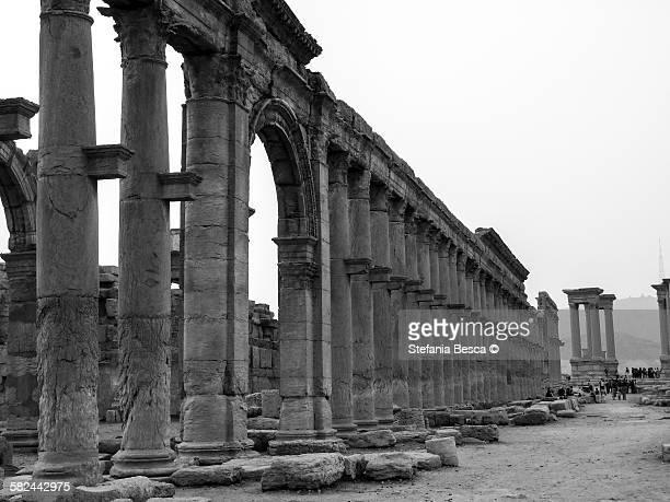 colonnade leading to tetrapylon - cité de l'architecture et du patrimoine photos et images de collection