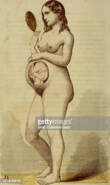 Color illustration depicting a heavily pregnant woman standing in fulllength three quarter profile view with a cutaway to reveal the position of a...