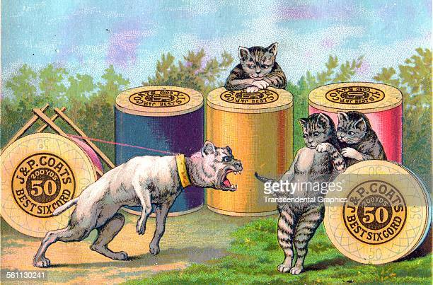 A color lithographed Victorian era trade card using the enmity of cats and dogs to sell Coats' thread New York New York circa 1880