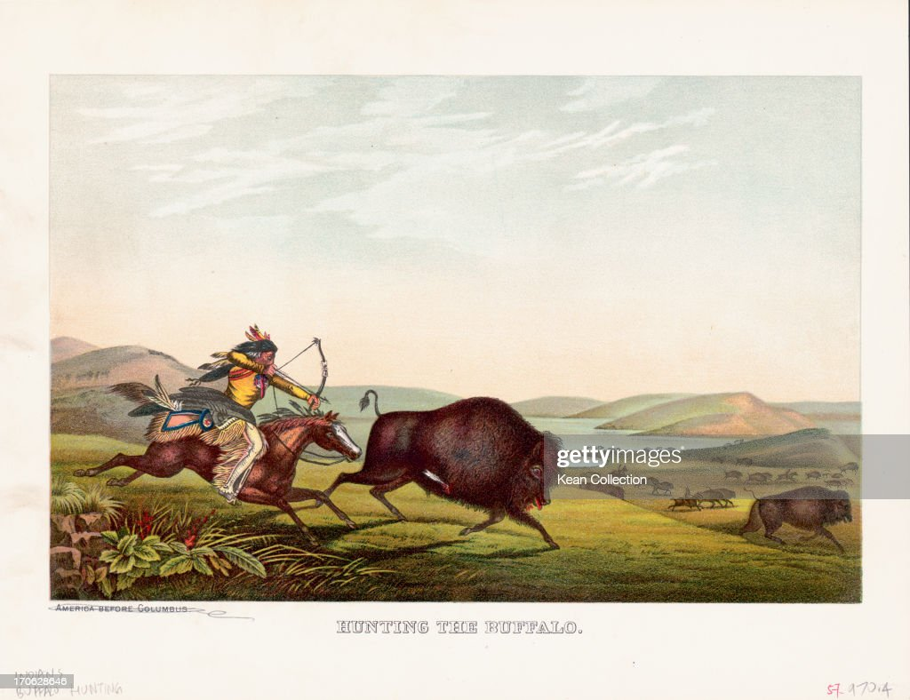 Color print of a Native American of a Plains Indian Tribe ...