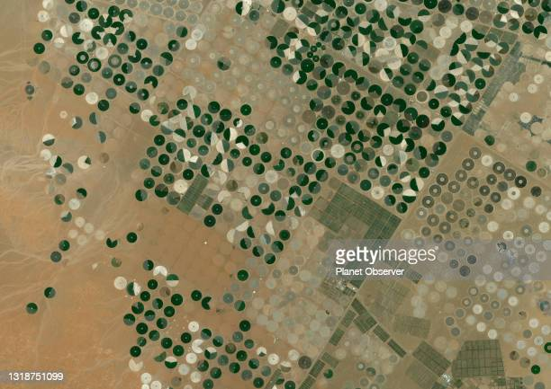 Color satellite image of crop circles in the desert in the Wadi As-Sirhan Basin, in Northern Saudi Arabia. Image collected on July 08, 2020 by...