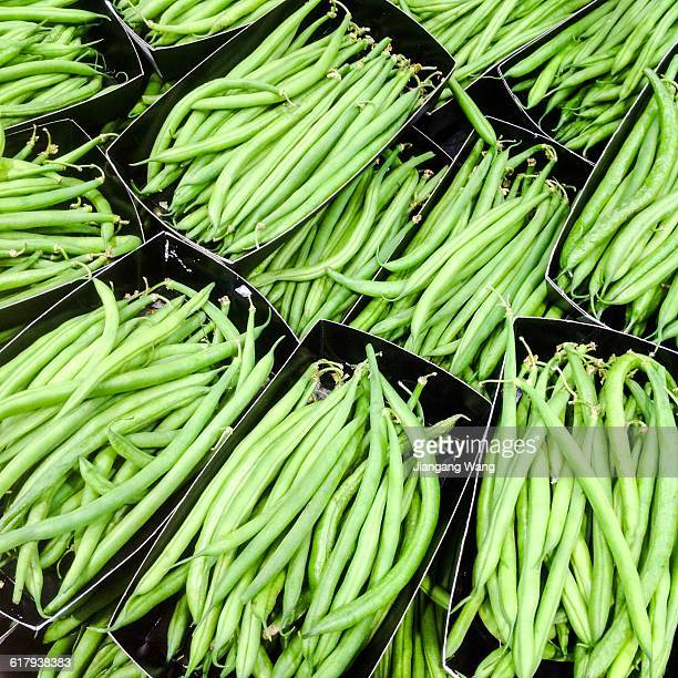 color stories - green - bush bean stock photos and pictures