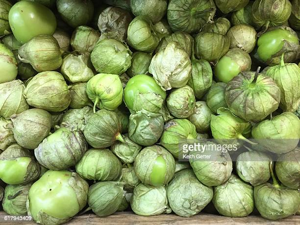 color stories - green - food distribution stock pictures, royalty-free photos & images