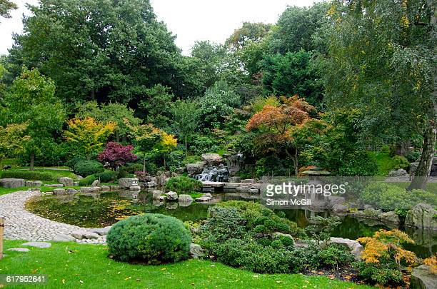 color stories - green - holland park stock pictures, royalty-free photos & images