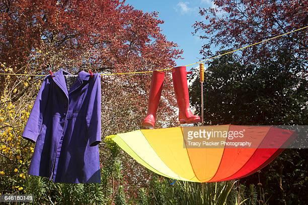 color stories: rainbow - irony stockfoto's en -beelden