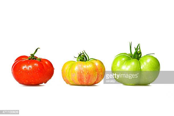 color tomatoes - unripe stock photos and pictures