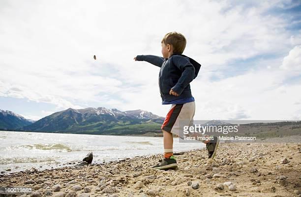 usa, colorado, boy (2-3) throwing rock in lake - solo un bambino maschio foto e immagini stock