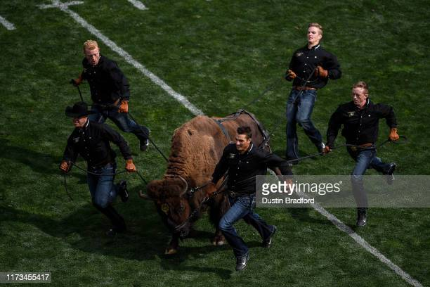 Colorado Buffaloes mascot Ralphie is run across the field by handlers at halftime during a game between the Colorado Buffaloes and the Nebraska...