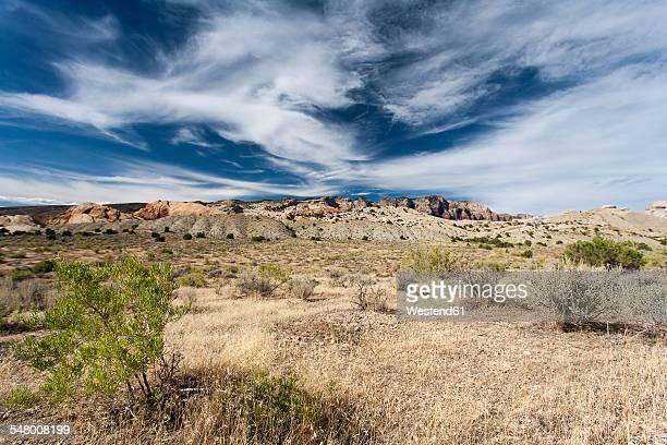 usa, colorado, colorado national monument - colorado national monument stock-fotos und bilder