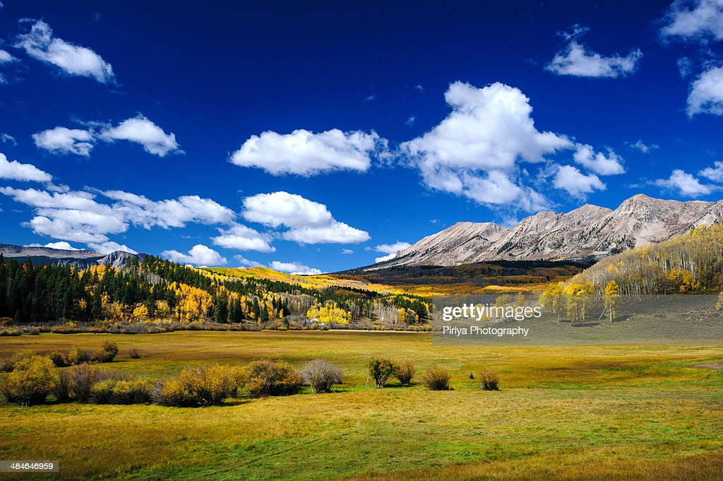 Colorado Fall Colors : Stock Photo