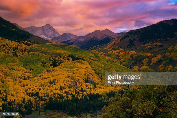colorado fall - aspen colorado stock photos and pictures