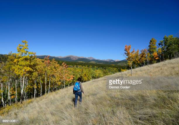 usa, colorado, hiker at kenosha pass - front range mountain range stock pictures, royalty-free photos & images