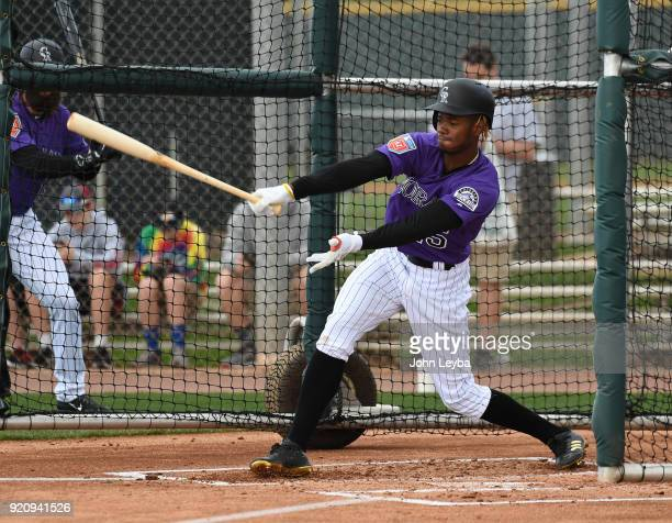 Colorado Rockies Raimel Tapia in the cage during batting practice on February 19 2018 at Salt River Fields at Talking Stick in Scottsdale Arizona