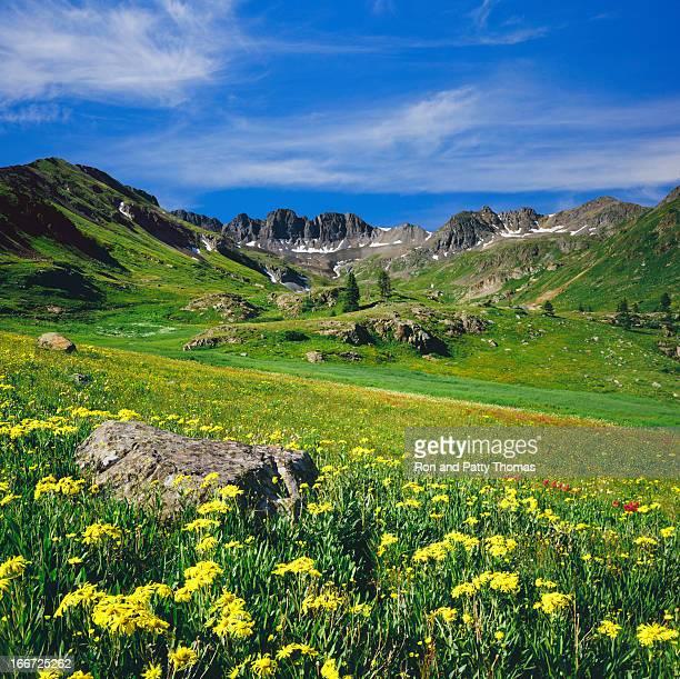 colorado rocky moutain spring - san juan mountains stock photos and pictures