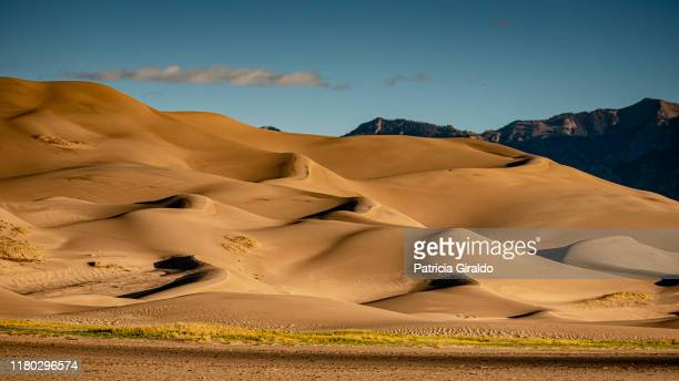 colorado sand dunes - great sand dunes national park stock pictures, royalty-free photos & images