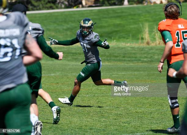 Colorado State University WR Olabisi Johnson #81 celebrates his game winning touchdown with teammates in pursuit during the Colorado State Green and...