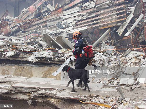Colorado Task Force member Ann Wickman crosses the pile of rubble with her search and rescue dog Jenner September 25 2001 at the World Trade Center...