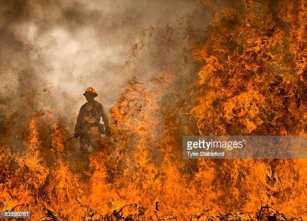 colorado wildfire fighters on prince creek burn. - forest fire stock pictures, royalty-free photos & images