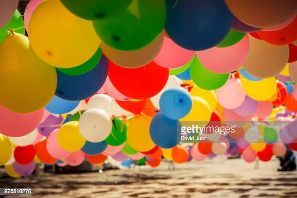 Colored balloons in sunlight