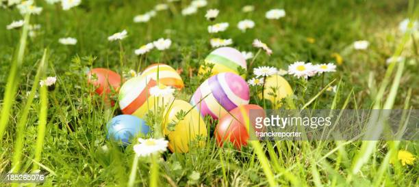 colored easter eggs on spring field with daisy