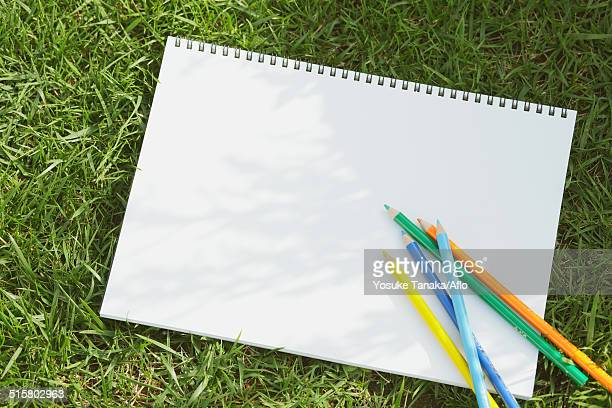 Colored pencil and sketchbook on grass