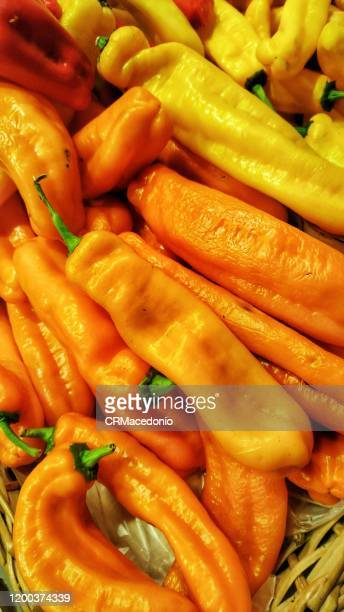 colored peppers. - crmacedonio stock pictures, royalty-free photos & images