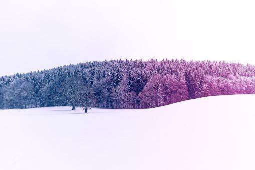 Colored winter landscape, Germany - gettyimageskorea