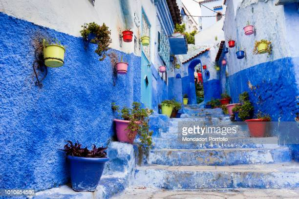 Colorful alley with flowers hanging on the walls. One of the most photographed alleys of Chefchaouen, April 2018