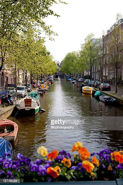 Colorful Amsterdam Canal in Spring