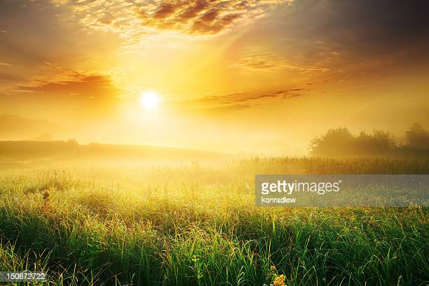 colorful and foggy sunrise over grassy meadow - landscape - zonsopgang stockfoto's en -beelden