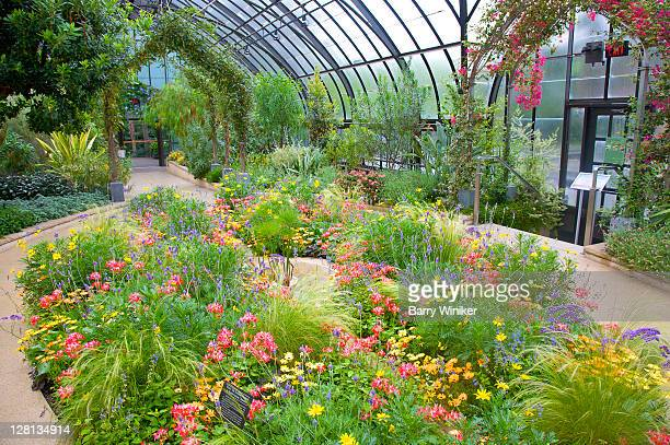 Colorful annual bed under conservatory in Longwood Gardens, Kennett Square, Pennsylvania