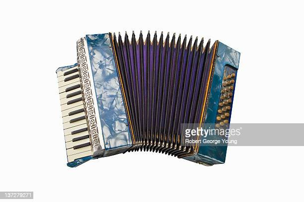 Colorful Antique German Accordion