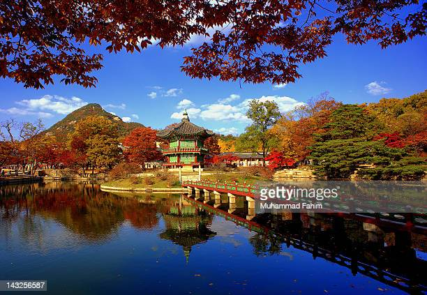Colorful Autumn in Gyeongbokgung Palace
