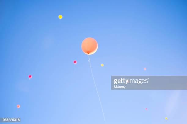 colorful balloons flying away in blue sky. wedding ceremony. - jahrestag stock-fotos und bilder