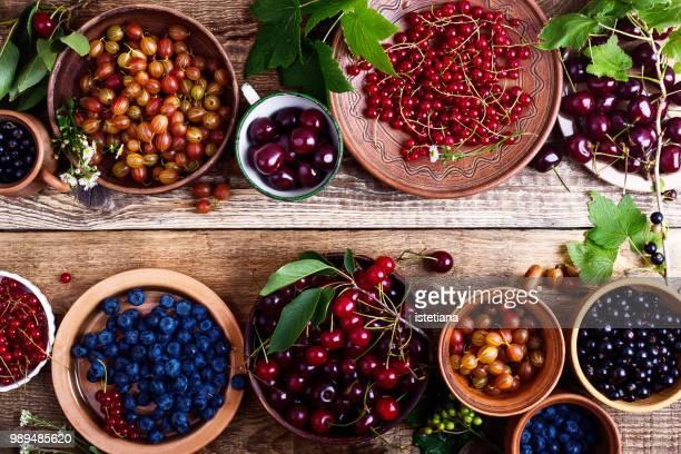 colorful berries background - johannisbeere stock-fotos und bilder