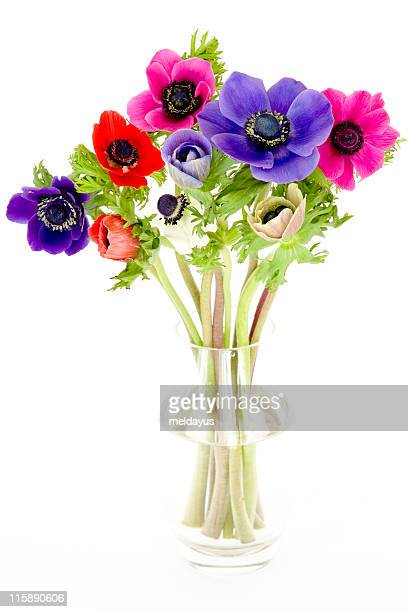 A colorful bouquet of anemones in a glass vase