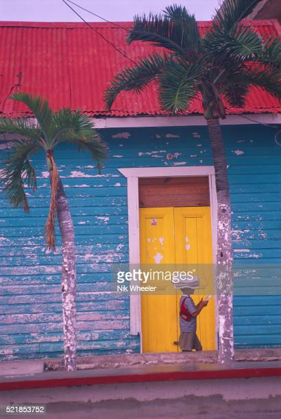 colorful building and palm trees - mujeres fotos stock-fotos und bilder